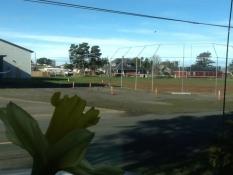 Stanley Field